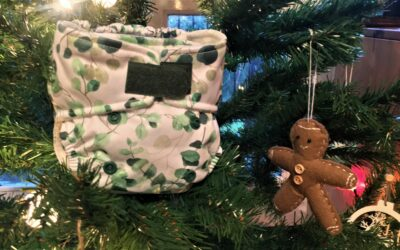 Gift Reusable Nappies this Christmas!